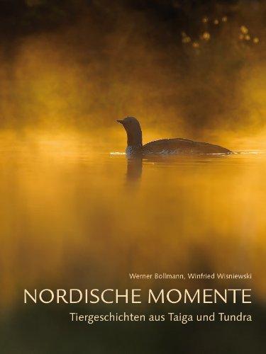 Nordische Momente: Tiergeschichten aus Taiga und Tundra