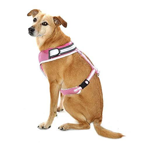 Equisafety blinkendes LED Hi-Vis Reflektor Hunde-Brustgeschirr (M) (Pink)