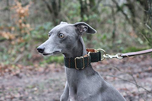 b83b171c7ce08 Green Tweed Martingale Collar Whippet Greyhound Italian Lurcher Sighthound  Wide Dog Collar (SMALL)