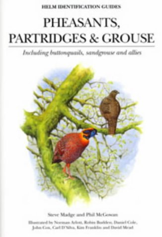 Grouse Bird (Pheasants, Partridges and Grouse: Including Buttonquails, Sandgrouse and Allies (Helm Identification Guides))