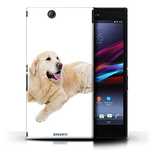 Kobalt® Imprimé Etui / Coque pour Sony Xperia Z Ultra / Bull Terrier conception / Série Chiens Labrador