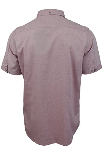 Tokyo Laundry - Chemise oxford Homme Manches courtes Rouge Prune