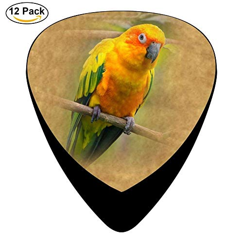 Sun Conure parrot Celluloid Guitar Picks 12 Pack For Electric Acoustic Guitar (Conure Parrot Sun)