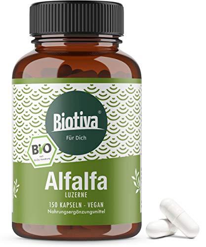 Alfalfa Luzerne (Bio) - 150 Kapseln - Medicago sativa - vegan - natürlicher Pflanzenextrakt ohne Magnesiumstearat - Abgefüllt und kontrolliert in Deutschland