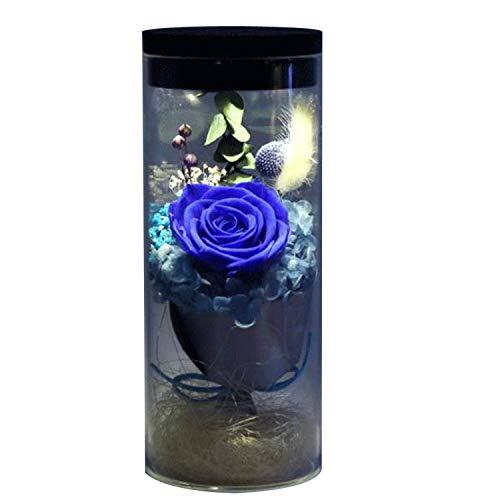 Ewige Blume erhalten frisch Rosen Blume Glas Cover Bunte Blumen mit LED Bunte Licht verwandeln, Valentinstag, Mother es Day, Geburtstag, Weihnachten, Hochzeitszeremonie