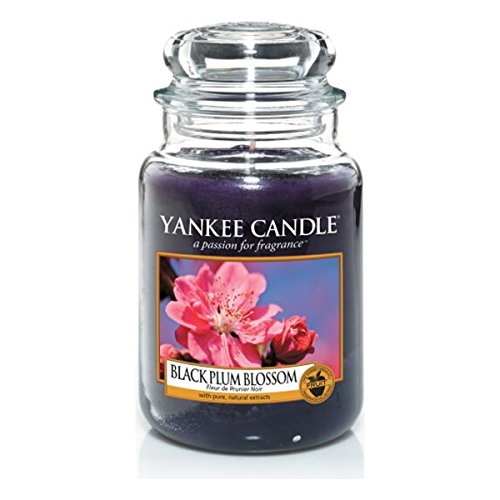 Yankee Candle Classic Housewarmer Gross, Black Plum Blossom, Duftkerze, Raum Duft im Glas / Jar, 1304344E