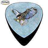 Birds Close Up Hawk Flying Wings Celluloid Guitar Picks 12 Pack For Electric Acoustic Guitar