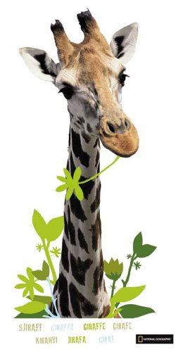 decofun-51070-fensteraufkleber-national-geographic-giraffe