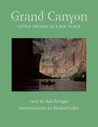 Grand Canyon: Little Things in a Big Place (Desert Places) by Zwinger, Ann (2006) Paperback