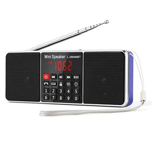 PRUNUS L-288 Tragbar AM(MW) UKW FM Bluetooth USB SD TF Radio MP3 mit Doppelmagnet Lautsprechern Stereo Sound AUX und Sleep Timer Funktion (Batterie Betrieben Radio Portable)