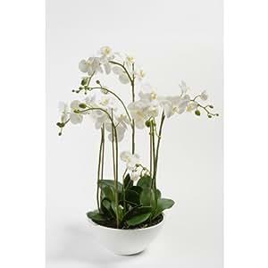k nstliche orchidee alicia in schale 6 zweige weiss gelb 80 cm hochwertige. Black Bedroom Furniture Sets. Home Design Ideas