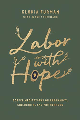 Labor with Hope: Gospel Meditations on Pregnancy, Childbirth, and Motherhood (English Edition)