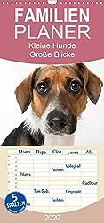 Kleine Hunde - Große Blicke - Familienplaner hoch (Wandkalender 2020, 21 cm x 45 cm, hoch)
