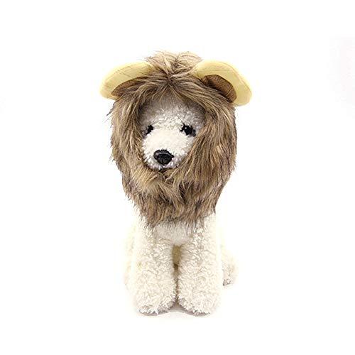 Yammucha Ziehen Sie Tuch Haustierkostüm Löwe Mähne Perücke für Halloween-Haustier-Kleidungs-Abendkleid (Color : M)