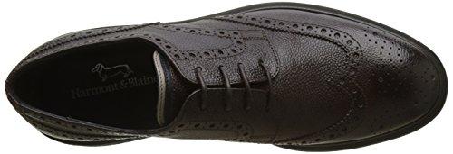 Harmont & Blaine E9050540, Chaussures à Lacets Homme Marrone (T. Moro)