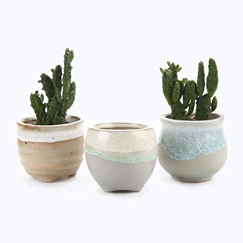 T4U 6.5CM Sukkulenten Töpfe Kaktus Pflanze Töpfe Mini Blumentöpfe Grau Basis Fließend Glasur Serie 3 Stücke Set