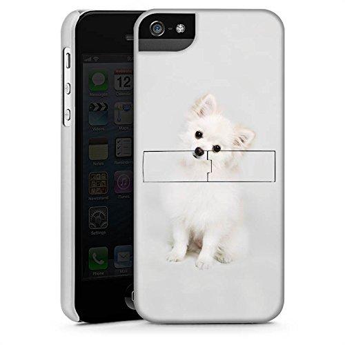 Apple iPhone 5 Housse étui coque protection Chien Chiot Chien CasStandup blanc
