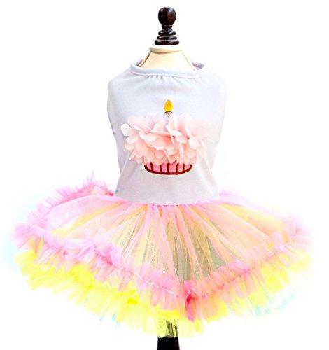 smalllee _ Lucky _ store Pet Kleine Hunde Prinzessin Kleider Puppy Katze Kuchen Tutu Kleid Rainbow Rock Shirt Bikini Chihuahua Kleidung