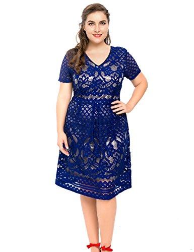 Chicwe Damen Gefüttert Vollfigur Dekorative Blumenspitze Große Größen Skater Kleid Kobalt Blau 2X