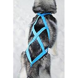 X-Back harnais pour chien pour le vélo, ski-joering, scooter, traîneau, Color bleu