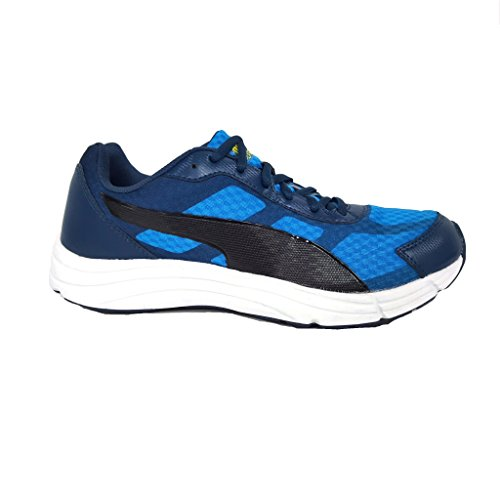 Puma , Sneakers Basses homme Multicolore - 008 ROYAL/NERO