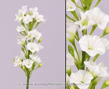 Phlox Flammenblume weiß, Höhe 35cm - Kunsblumen künstliche Blumen Kunstpflanzen künstliche Pflanzen Blumen
