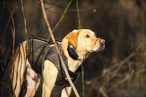 EUROHUNT 3133 Dog Boater\'s Hundeparka, verschiedene Größen, Hundeweste, aus 5mm starken Neopren, Jagdweste, Hundeschutzweste