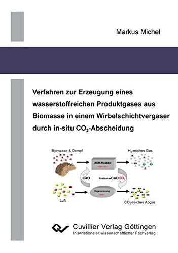 Verfahren zur Erzeugung eines wasserstoffreichen Produktgases aus Biomasse in einem Wirbelschichtvergaser durch in-situ CO2-Abscheidung