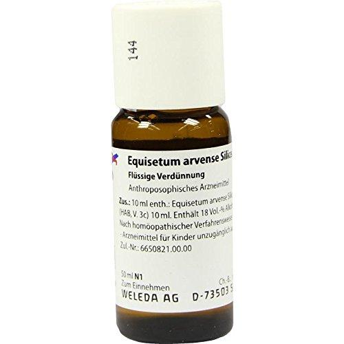EQUISETUM ARVENSE Silicea cultum D 3 Dilution 50 ml Dilution