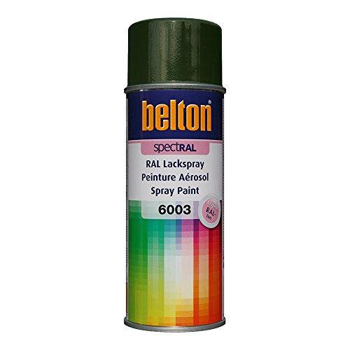 Unbekannt KWASNY 324 098 Belton Spectral Lackspray RAL 6003 olivgrün Hochglanz 400ml