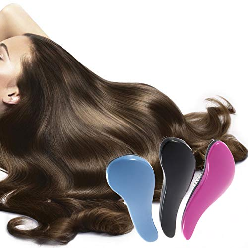 Exquis Brosse à cheveux professionnel Combs douche Salon Styling noir brosse à cheveux