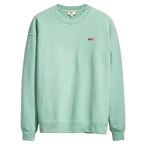 Levi's Damen Oversized Crewneck Sweatshirt, Türkis (Garment Dye Sportswear PFD to Cascade 0005), X-Small Cascade Pan