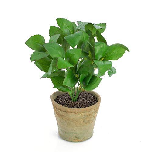 artplants.de Künstliches Basilikum LUCANO im Terracotta Topf, grün, 25cm - Kunst Basilicum - Kräuter
