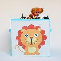 FAP Children storage box