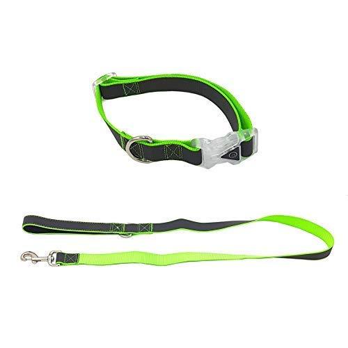 2 Pce Reflektierende Led Lichter Eingefärbt Hund Verstellbar Halsband - Mittelgross 16 20 Zoll & Leader Lead -
