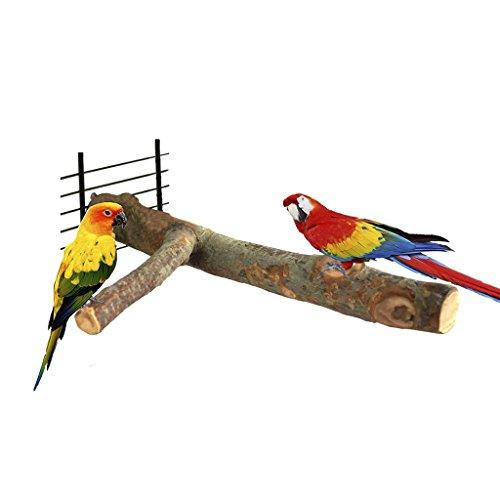 Bwogue apfel Vögel Sitzstangen, natur Holz Ständer Spielzeug Ast für Papageien Käfige Spielzeug