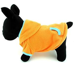 Pegasus Manteau à capuche pour Chiot Chat Petit Chien en polaire Style Sport