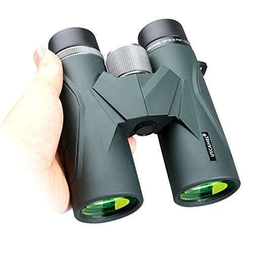 Jumelles 8x42 pour Adultes, Jumelles compactes Professionnelles HD pour l'observation des Oiseaux, Voyages, Observation des étoiles, Camping, Concerts, visites touristiques Vert