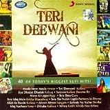 #4: Teri Deewani: 40 of Todays Biggest Hits