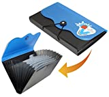 #5: expanding cheque book holder case, travelling passbook/document elastic bag 12 section