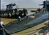 Fleet Ballistic Missile (FBM) Submarines and Their Sailors