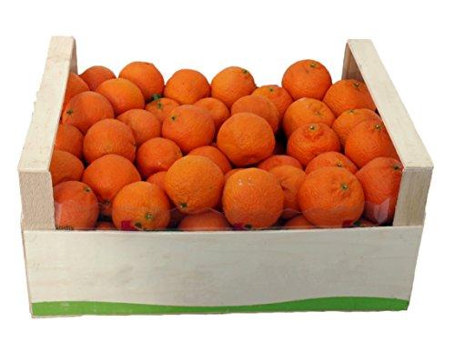 ARISTOS kernarme naturbelassene griechische Clementinen (6 kg) Schale zum Abreiben geeignet Ernte: 24.11.2018