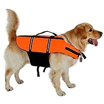 Chaleco Salvavidas perro 2