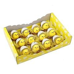 Idea Regalo - Griselda Curme - Set di 12 Mini Pulcini in ciniglia Gialli per Uova di Pasqua, bomboniere, Regali per Bambini.