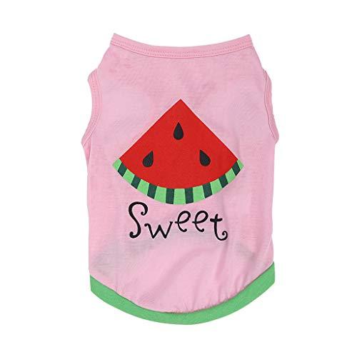 Hawkimin Pullover für Katzen New Cute Pet Frühling und Sommer atmungsaktiv Wassermelone Print Vest Kleidung Hund (36 X 24 Hundebox)
