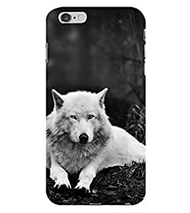 HiFi Designer Phone Back Case Cover Apple iPhone 6 :: Apple iPhone6 ( Wolf White Front Look )