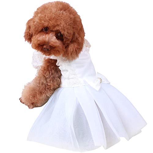 L Pet supplies 憨憨 Hund Kleidung Anzug Anzug Brautkleid Kleid Kleidung Teddybär Xiongwei Smoking...
