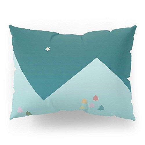 Check-standard Pillow Sham (fengxutongxue Winter Night Pillow Sham Standard (20