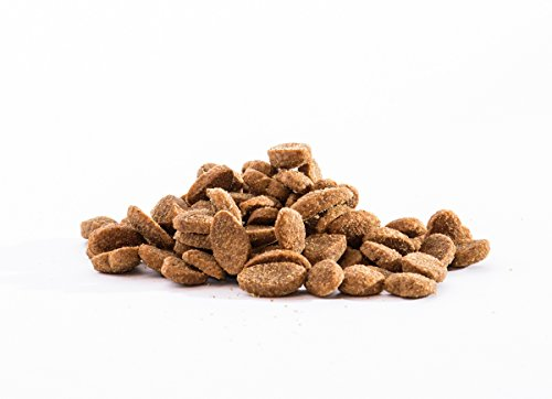 Panzi FitActive Premium Hundefutter Rind normal - 2