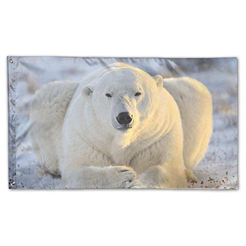 Wild Polar Bär Home Garten Flaggen Polyester Flagge Fahne Deko Indoor-/Outdoor Wall Banner Garten Flagge 3x (Bären Füße Kostüm)